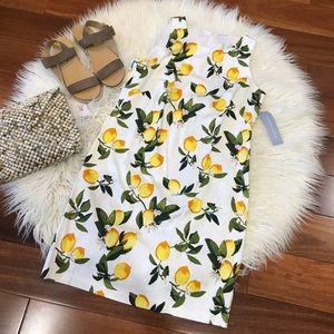 New🌿London Times  Midi Dress